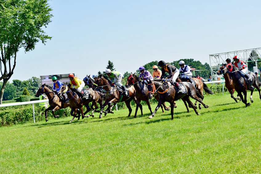 Wroclaw, Poland - Juni 8, 2014: Race for 3-year-old horses only group III in Wroclaw. This is an annual race on the Partenice track open to the public.