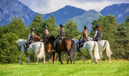 Rear view of group of friends enjoying horseback riding on meadow, women only.